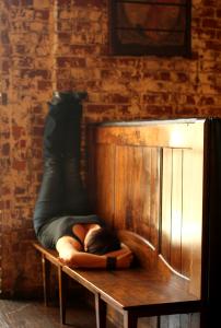 Barback Yoga