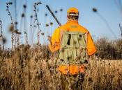 Causes, Effects Solutions Overhunting