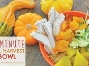 10-Minute Fall Harvest Bowl (gluten Free, Free)