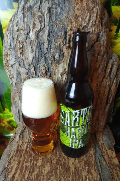 Sartori Harvest IPA (2017 Edition)- Driftwood Brewing