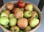 Recipe: Slow Cooker Applesauce