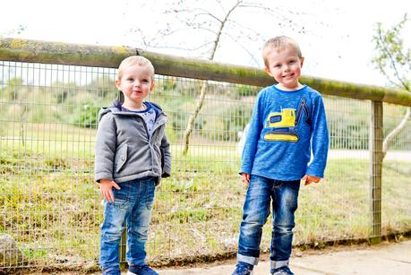 The Boys In October 2017 -  Little Darlings, High Pitched Screams & Sibling Squabbles
