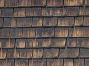 Advantages Cedar Roof