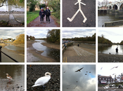 Richmond Lock Weir Draw-off Tide Thames 29th October 19th November 2017