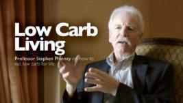 November low-carb & keto news highlights