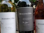 Trio Wine from Murrieta's Well While Listening White Buffalo