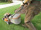 Things Maintain Your Lawn Mower Condition