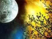 Full Moon Meditation with Archangels November Hunters