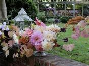 Monday Flowers Adieu Dahlias