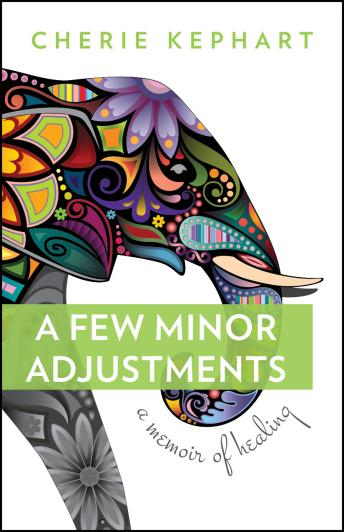 Surviving Undiagnosed Illness – A Few Minor Adjustments #BookReview and #AuthorInterview