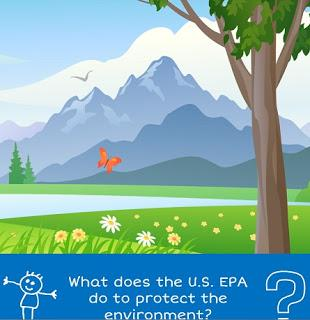 FREEBIE: Learning about the Environment (ALL)
