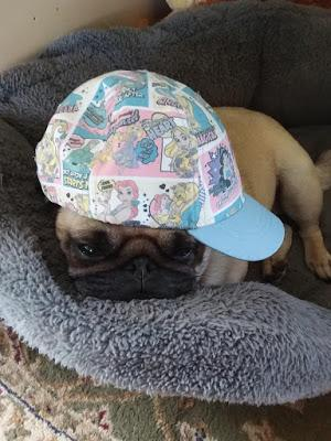Suky in a Hat