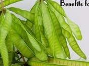 Lead Tree Benefits Skin, Hair Health