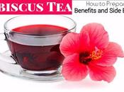 Hibiscus Prepare Benefits Side Effects