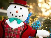 Festive Holiday Season Busch Gardens Tampa