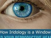 Eyes: Iridology Window Into Your Reproductive Health