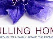 Book Review Pulling Home Mary Campisi