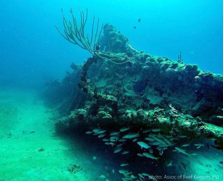 Wreck of the Rhone, AFTER the hurricanes - look at that coral!