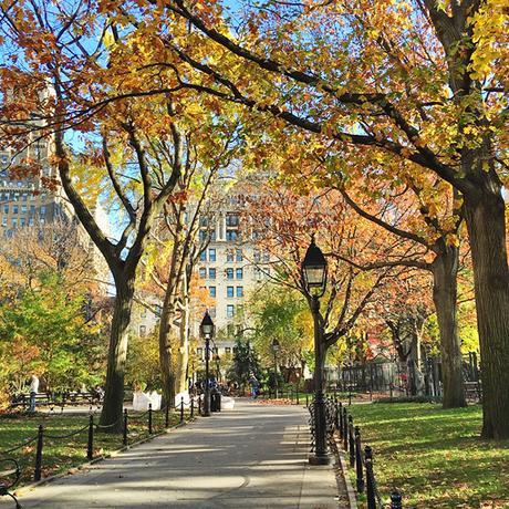 New York City, Autumn, The Five Senses Of Fall, Autumn, Fall Is my favorite season