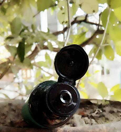 Greenberry Organics Detox Charcoal Facewash Review!!