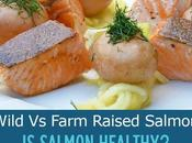 Salmon Healthy? Health Benefits Wild Versus Farm Raised