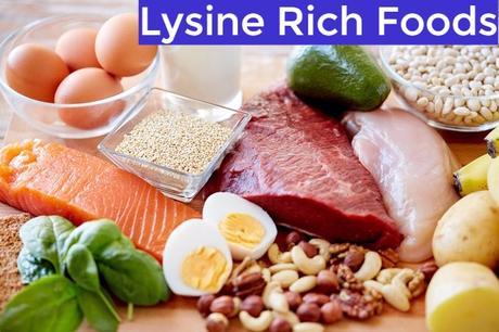Lysine Rich Foods