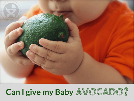 Avocado is a fruit with a load of health benefits which makes Moms wonder,