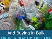Living Plastic-Free, Zero-Waste Life Buying Bulk