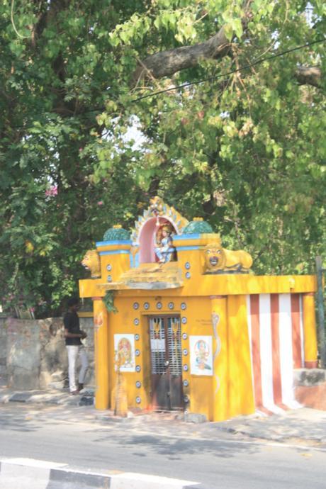DAILY PHOTO: Roadside Shrine