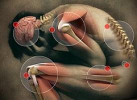 The Neuropathy Chronicles 2.0