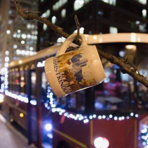 chicago trolley holiday lights tour