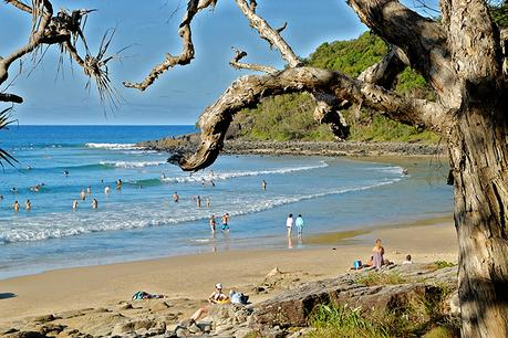7 Things to do in Noosa with Kids that Won't Break the Bank!