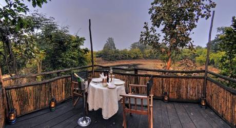 Safari in India: Treehouse hideaway Bandgavgarh - viewing deck