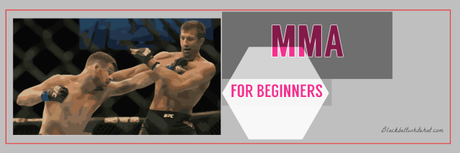 MMA for Beginners