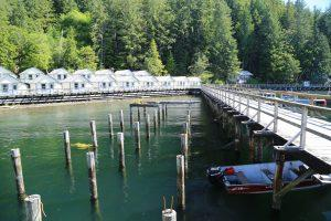 Finding Inspiration (and lots of fish) at Waterfall Resort, Alaska