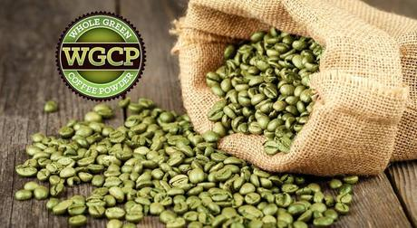 Whole Green Coffee Powder (WGCP): Your Focus and Weight Loss Secret Ingredient