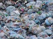 Plastic Bags: Matter Convenience Curse Environment
