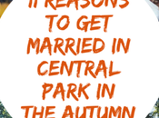 Eleven Reasons Married Autumn Fall!) Central Park