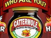 Cattermole: Better Worse, Time Vote