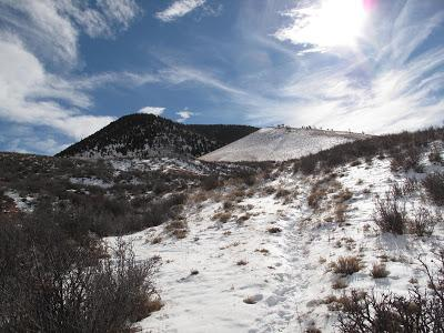 Guest Post: The Cactus Field(s) of Sheep Mountain
