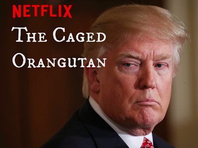 Netflix Presents: The Caged Orangutan