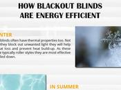 Save Energy Electricity Bills with Blackout Blinds Infographic