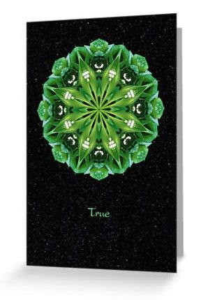 True II Flower Mandala Card