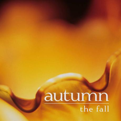 autumn – the fall