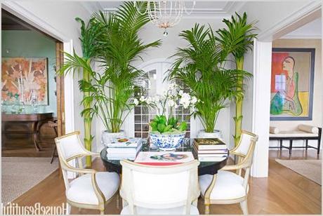 Palm Tree Living Room Decor Porly