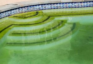 How to Remove Pool Algae, What Causes Pool Algae, Orlando Water Leak Detection, Orlando Swimming Pool Company, Water Leak Detection
