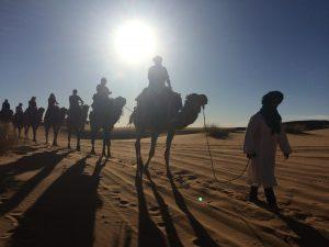 The Moroccan Sahara. A Sunset Camel Ride in Erg Chebbi.