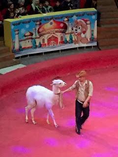 Uzbek Circus