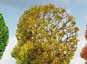 Effective Natural Treatment Alzheimer's Disease