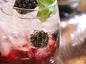 Blackberry Brandy Fizz Cocktail